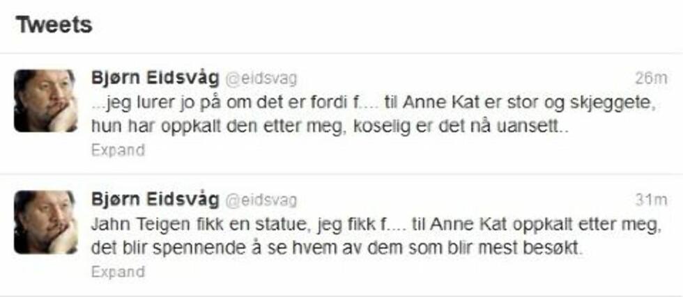 TIL ANNE-KAT.: Fra Bjørn Eidsvåg. Foto: Skjermdump/Twitter