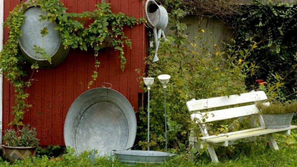 HØSTHAGE: Det er ikke så mye som skal til for å klargjøre hagen før frosten kommer. Beskjæring er det viktigste, og så kan du med hell plante stauder nå. Foto: Helge Eek