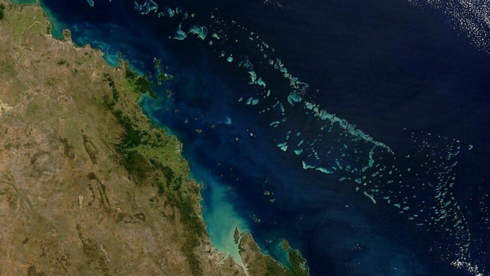VERNER: Australia verner havområder tilsvarende India i størrelse, hvor det blant annet nedlegges forbud mot leting etter olje og gass. Satellittbildet viser deler av Great Barrier Reef. Foto: Jacques Descloitres, MODIS Rapid Response Team, NASA/GSFC