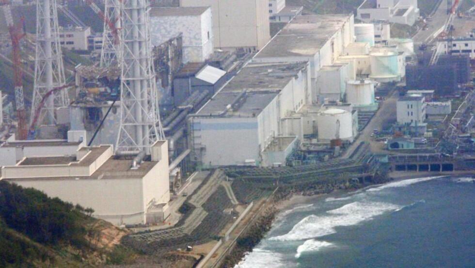 STARTER OPP: Japan starter opp igjen atomreaktorer i ett av landets viktigste industriområder til tross for stor folkelig skepsis etter atomulykken i fjor. Nedsmeltingen og lekkasjene ved kraftverkene i Fukushima førte til at radioaktive stoffer ble spredt utover et stort område, og titusenvis ble evakuert. Foto: TOM CURLEY / AP PHOTO / NTB SCANPIX