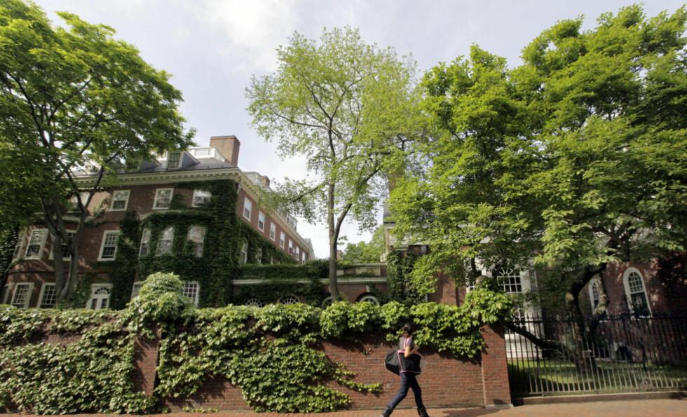 GÅR ONLINE:  Flere kurs fra Harvard-universitetet kan bli gratis tilgjengelig på nettet i framtida. Foto: AP Photo/Elise Amendola
