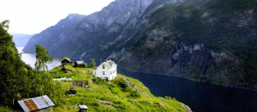 LØSREVET: Det hovedsakelige med våre dagers hus og leiligheter er abstrakt: Bopælene våre er potensielle verdier; friheter som kan løses inn i andre friheter, andre steder, skriver Agnar Lirhus.