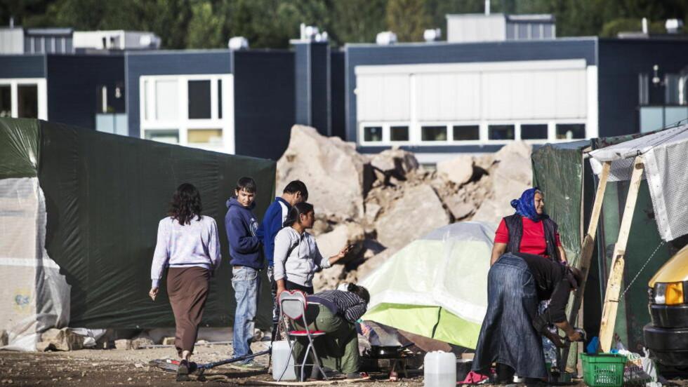 BER ROMFOLKET DRA: Deleier Albert Kristian Hæhre ber om at leiren skal være ryddet inne fredag klokka 10. Foto: Sondre Steen holvik / Dagbladet.