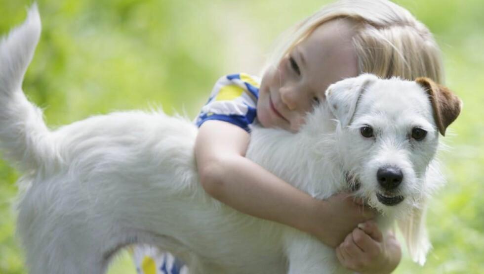 BESTEVENNER: Barn og hund går stort sett veldig godt sammen, men jobb med å skape en god kontakt så tidlig som mulig. Foto: Istockphoto.com