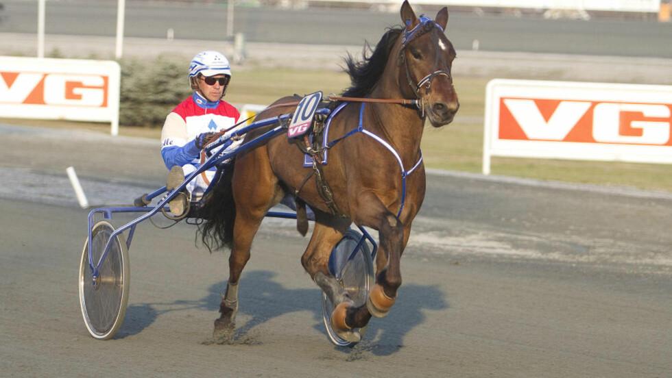 I EN KLASSE FOR SEG. Torpa Jan er kvitt problemene. Treneren mener hesten er et unikum. Foto: Hesteguiden.com