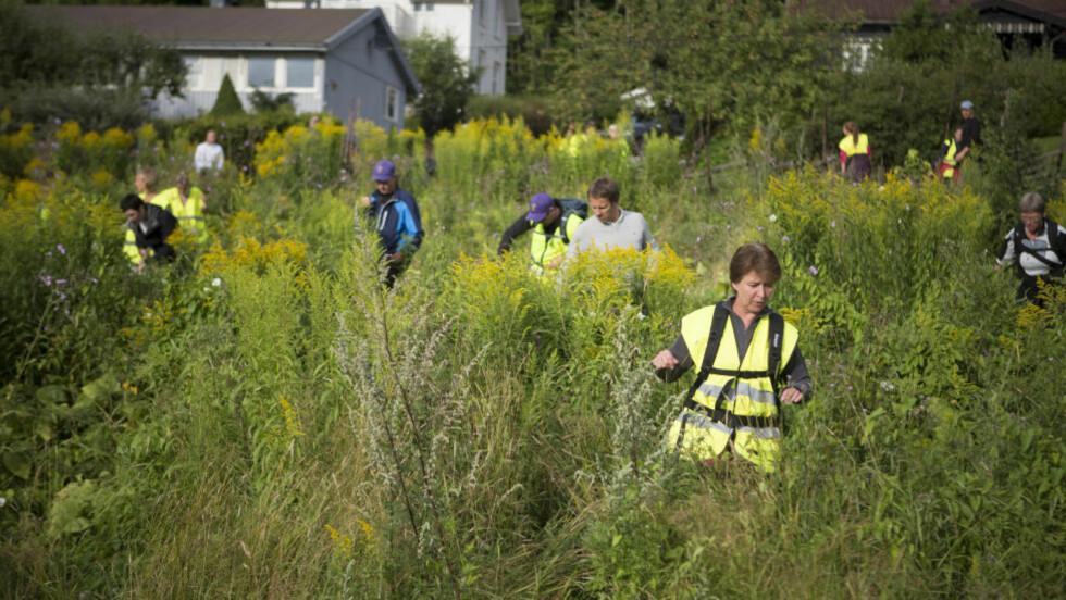 FRIVILLIGE: Rundt 700 frivillige deltok i dag i søket etter 16 år gamle Sigrid. I morgen fortsetter søket. Foto: Jo Straube / Dagbladet