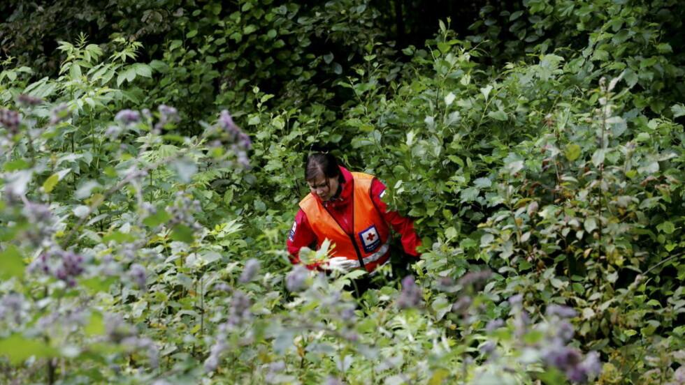 DOBLET: En kvinne fra Røde Kors leter etter Sigrid Schjetne i det utfordrende terrenget i Østmarka. I dag er antallet letemannskaper fra  Foto: Erlend Aas / NTB scanpix