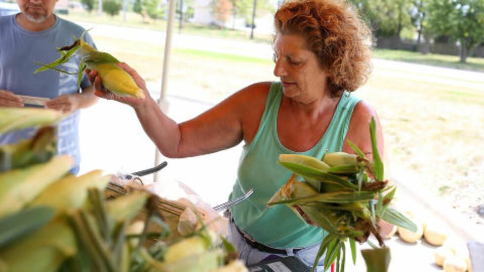 DYR MAIS:  Paulette Vandyke jobber for Grim Sweetcorn. Her selger hun noen av de få maiskolbene som ikke er ødelagt av de høye temperaturene. Den har økt betrakelig i pris. Foto: Justin Sullivan / AFP / NTB Scanpix.