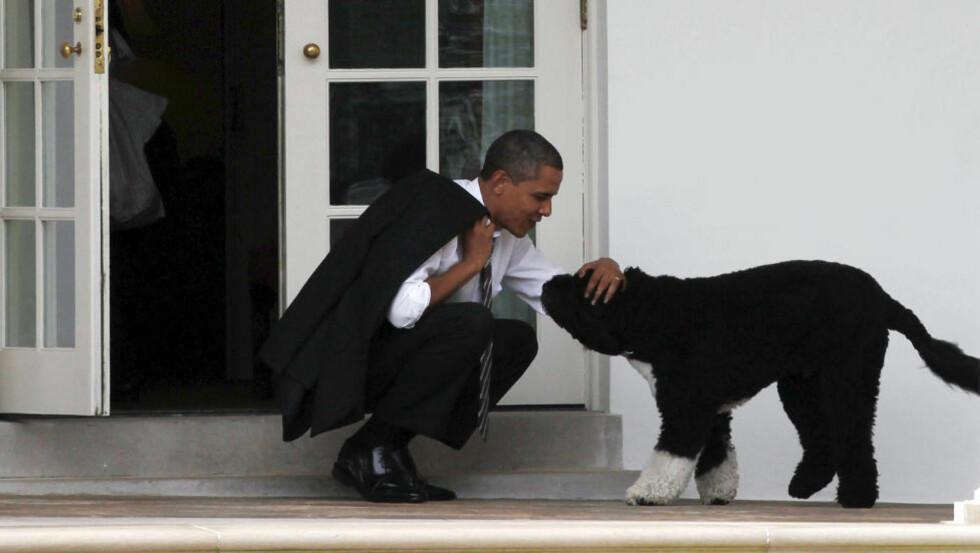 PRESIDENTEN OG DEN KARISMATISKE BIKKJA: Obama og Bo utenfor det ovale kontor i mars i år. Foto: Larry Downing / Reuters