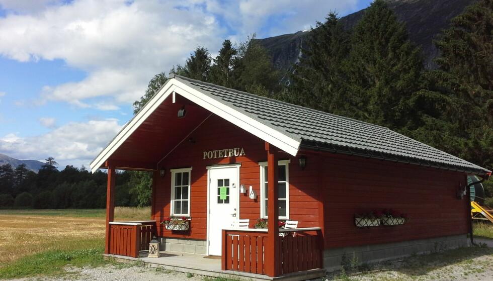 DØGNÅPEN: Potetbua til Liv Neerland i Sunndal er blitt en liten gullgruve. - Jeg selger mer og mer år for år, sier hun. Foto: LIV NEERLAND