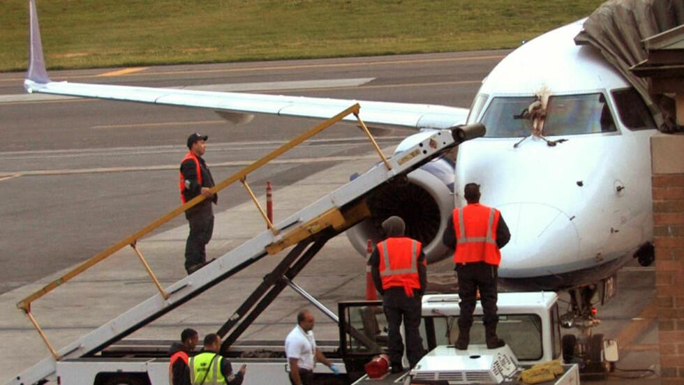 FUGLEKOLLISJON JetBlue-flyet ble nødt til å nødlande etter to gjess traff flyet. Den ene fuglen ble sittende fast foran vinduet, og utsikten fra cockpiten ble blokkert. Ingen personer ble skadet under hendelsen. Foto: MATTHEW BROWN / THE JOURNAL NEWS / AP PHOTO / NTB SCANPIX