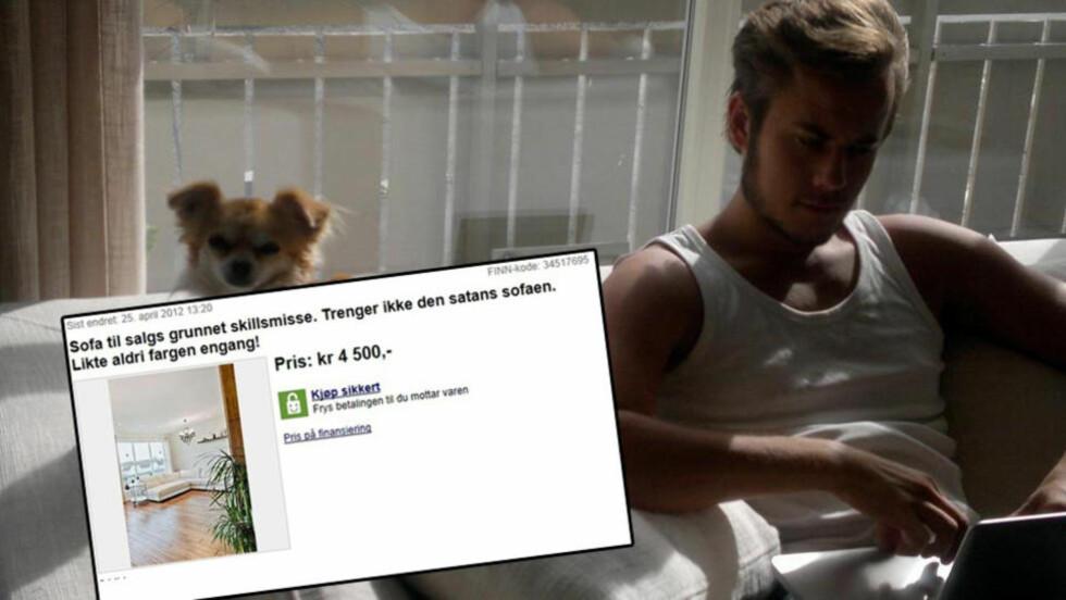 - SATANS CHIHUAHUA: Den hvite sofaen han sitter i var ikke det eneste Arvid Ågotnes (27) kvittet seg med etter skilsmissen. - Det var jeg som ville ha hund - stor hund, men måtte etter lange forhandlinger ta til takke med en rotte. Foto: skjermdump fra Finn.no/privat