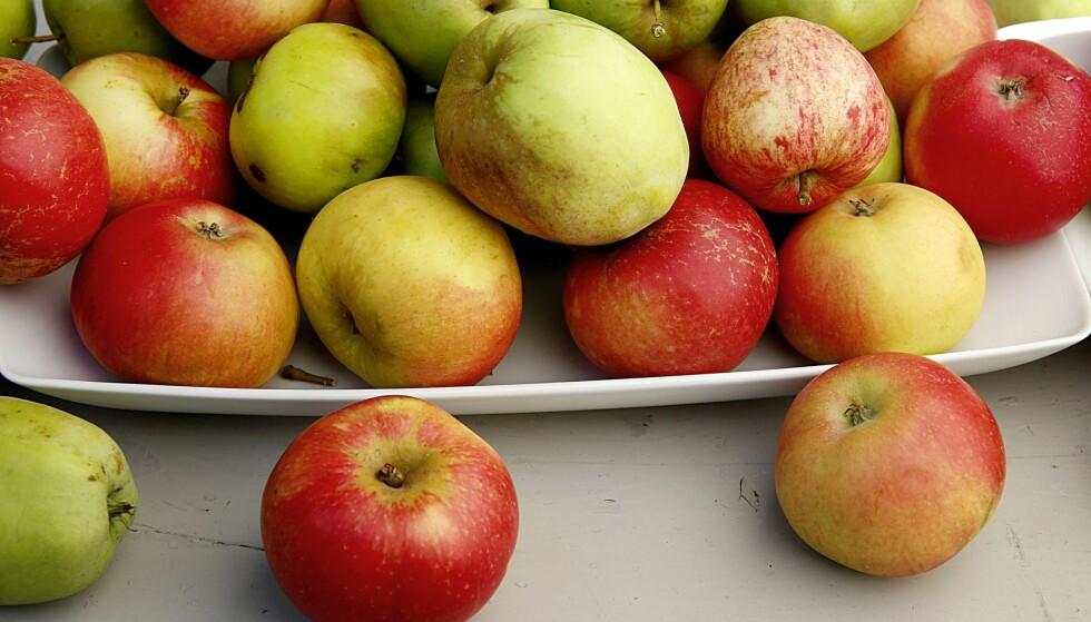 EGENART: Eplenes Champagne er i din egen hage. Dine epler er kanskje ikke perfekte, men de smaker av din hage.
