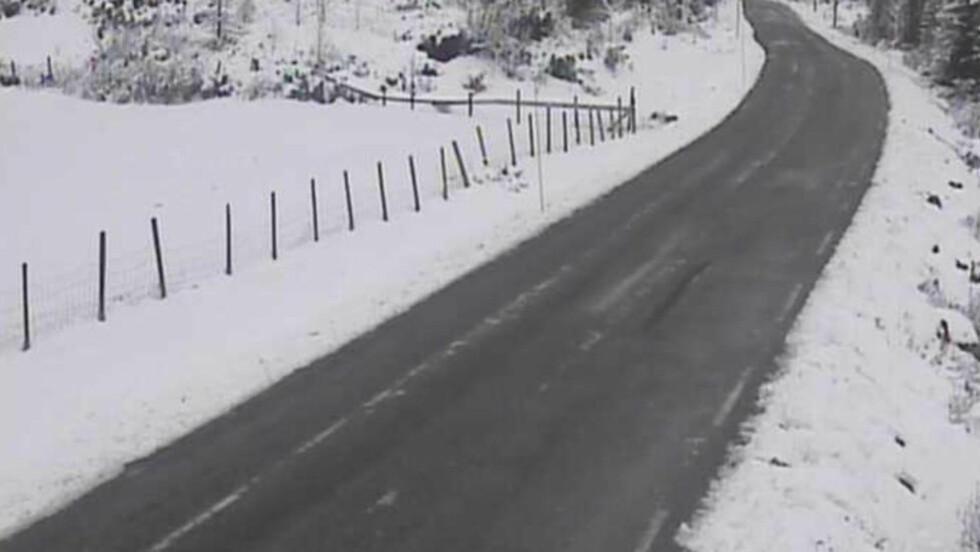 SNØFALL: Slik så det ut på Haglebu på Østlandet lørdag formiddag. Veiene rundt Oslo var bare for snø noen timer etter at bilister støtte på mye snø på veiene lørdag morgen. Foto: Vegtrafikksentralen