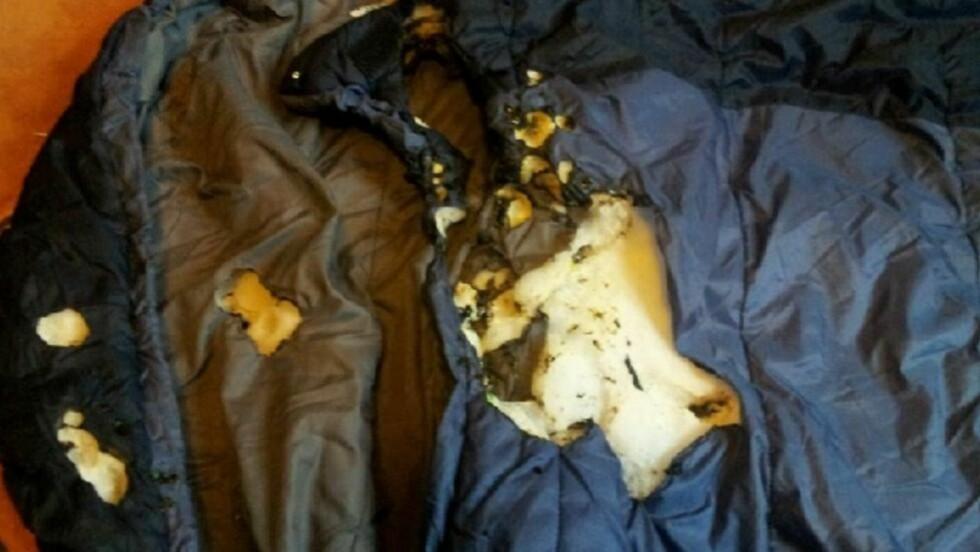 BRENT:  Tiril Drageset Farstads sovepose ble skadet etter at den begynte å brenne. Den øverste delen av soveposen, hvor hun hadde hodet, ble hardest skadet. Foto: Privat