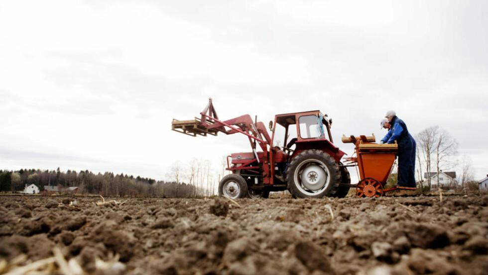 STYRES AV EGENINTERESSER: «Forbrukerne har tapt kraftig på jordbrukspolitikken,» skriver artikkelforfatteren. Foto: Tore Meek / NTB scanpix