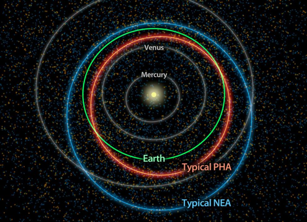 NABOLAGET: Nye observasjoner antyder at det finnes rundt 4600 potensielt farlige asteroider (PHA) som kan true jorda. I grafikken er de orange prikker, mens de blå er såkalt jordnære asteroider (NEA). Disse har en bane som bringer dem nært jorda, men uten fare for at de treffer. Merk at asteroidene ikke er illustrert i riktig størrelsesforhold.  Foto: NASA/JPL-Caltech