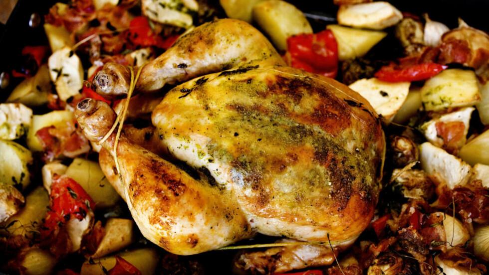 NAM: Kens utvalgte pinot noir passer godt til stekt kylling. Synes du den er for dyr, kan du trygt velge en av de billigere vinene. Foto: METTE MØLLER