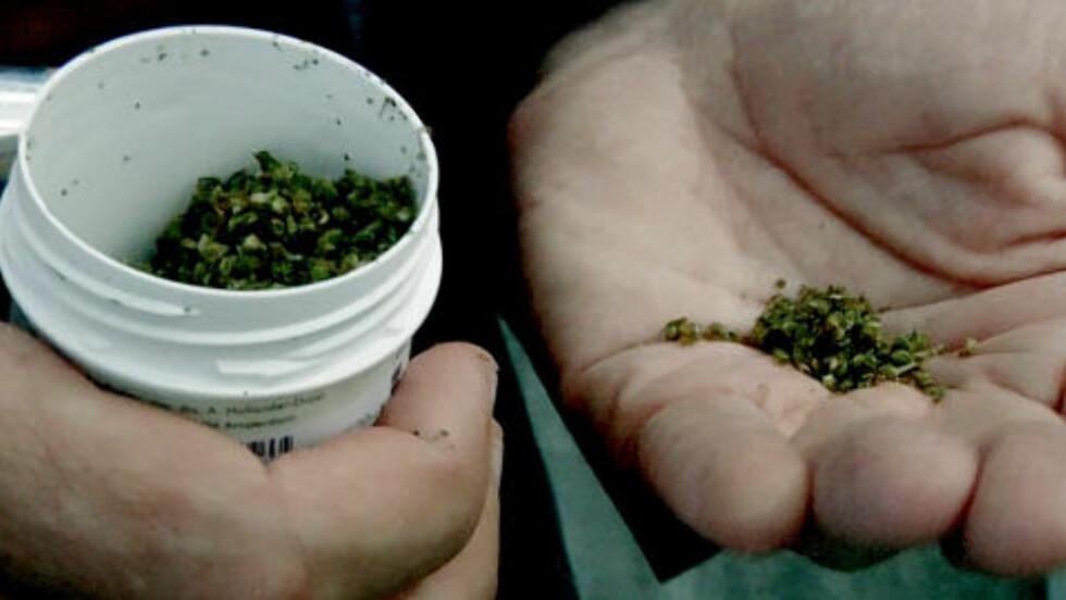 GLEDER SEG TIL Å «SMAKE»: Svein viser fram marihuanaen han fikk tilbake fra norske tollere. Foto: KillerbunnyTV.com