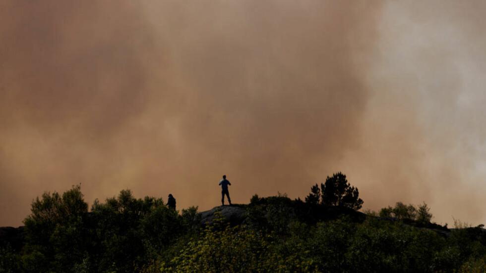 KRAFTIG GRESSBRANN: Brannvesenet har ikke kontroll på den kraftige gressbrannen i Sveio i Hordaland. Foto: Kristian Eidesvik