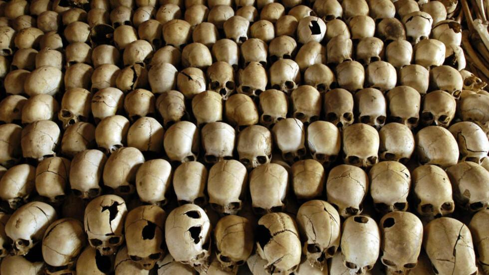 OFRE FOR FOLKEMORD: Hodeskallene til ofre for Ntarama-massakren under folkemordet i Rwanada i 1994. Foto: Gianluigi Guercia/AFP/NTB Scanpix