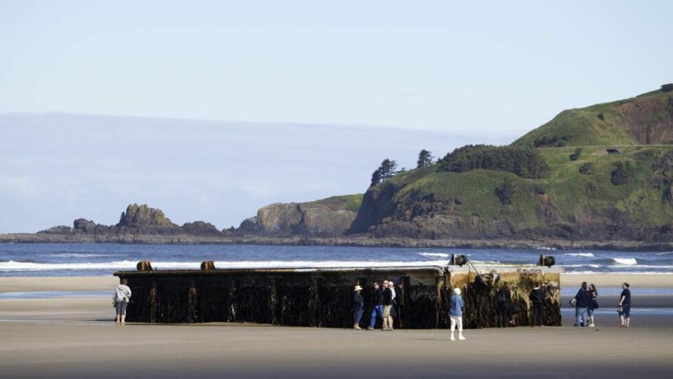 FLØYT I LAND: En stor flytebrygge med en japansk informasjonsplakat fløyt i land på Agate Beach utenfor Newport i oregon i går. Foto: AP Photo/The Oregonian, Thomas Boyd/NTBScanpix