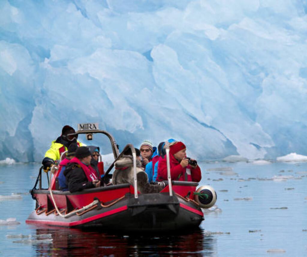 SLALÅM: Isfjellene som dupper i fjorden utenfor Ny Ålesund, blir vakre rundingsbøyer i en spennende fjordslalåm, med moderskipet som start og mål. Foto: STIG BRØNDBO