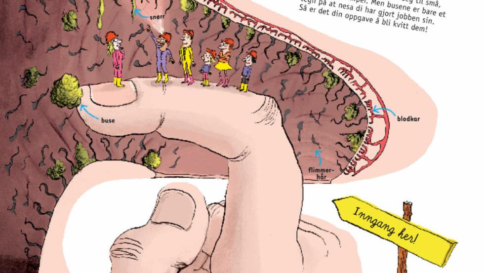 TØFFE TEGNINGER: «Au! Promp! Atsjo!» forteller kort og informativt om alt det rare som skjer i kroppen. Utsnitt fra boka