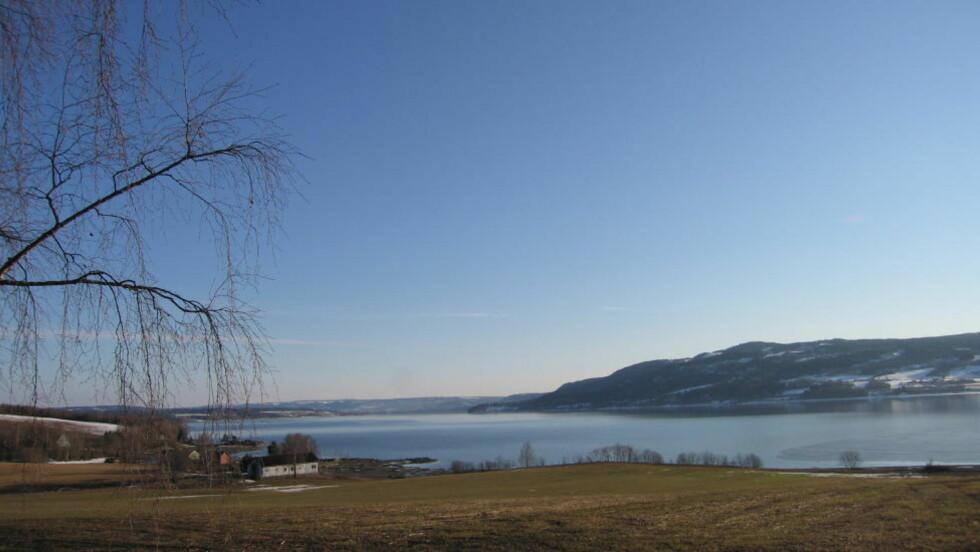 URENSET KLOAKK:  I løpet av de fire siste dagene har 26 000 kubikkmeter urenset kloakk gått ut i Mjøsa. Bildet er tatt av Mjøsa i Ringsaker, ikke Ottestad. Foto: Solveig Vikene / SCANPIX