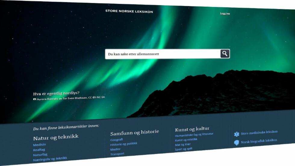 NY UTGAVE: Store norske leksikon ble lagt ned, men har fått nytt liv med privat støtte. Kan norske akademikere og fageksperter lage et bedre oppslagsverk enn de frivillige bak Wikipedia?
