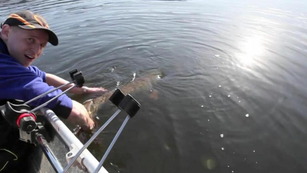 - HA DET: Martin Gaupholm Karlsen tar farvel med kjempegjedda, som får litt tid i vannet til å hente seg inn, før sportsfiskeren lar den svømme av gårde. Foto: Privat