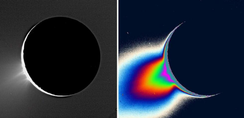 KAN DET VÆRE LIV HER?: Vann og isgeysirene på Saturn-månen Enceladus har vært kjent i flere år, men forskere har lurt på om det har vært for kaldt på månen til at det finnes store mengder flytende vann - hovedingrediensen til liv - under isen. Men to uavhengige studier i år var godt nytt: Det er mye varmere på månens sørpol enn først antatt, og det er store mengder natriumsalter i sprutene som står ut - akkurat som i havene her på jorda. Dette gir solsystemets tøffeste måne en plass på lista over årets beste astronyheter. Foto: EPA/NASA/JPL/SPACE SCIENCE INSTITUTE/SCANPIX