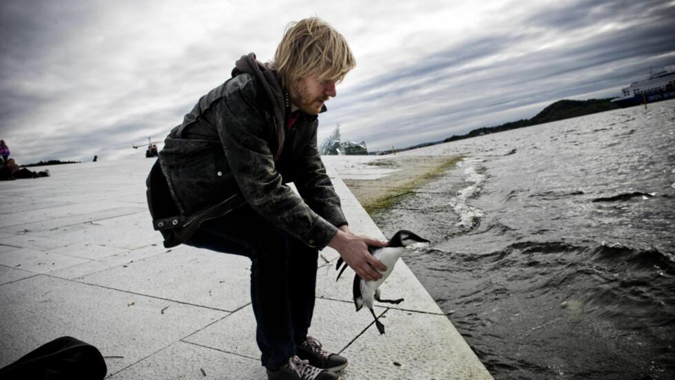 FUGLEHELT: Ruben Fagereng fant seg en lomvi ved Ullevål stadion. Etter råd fra eksperter slipper han den ut i sjøen ved Operaen.Foto: Håkon Eikesdal/Dagbladet