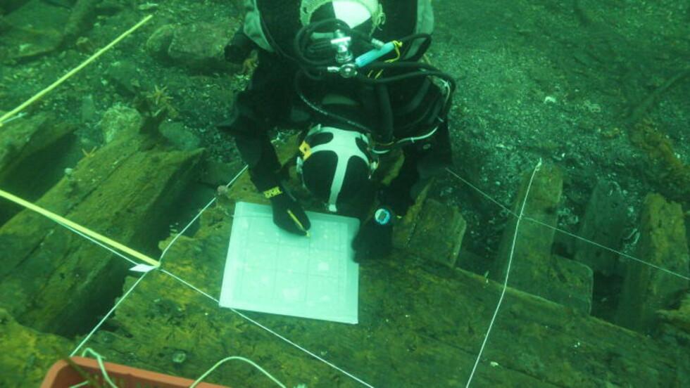 DETEKTIVARBEID: Undersøkelsen har to hovedformål: Å finne ut hva slags skip det var, og når det sank. Dimensjonene antyder at det har vært et stort fartøy, men hva det bar i lasten er foreløpig ukjent.  Foto: Eirik Herdlevær Søyland/Bergens Sjøfartsmuseum