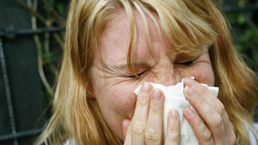 ATCHOO!: Det er ubehagelig å bli syk, og høsten er høytid for luftveissykdommer. Foto: Sara Johannessen / SCANPIX