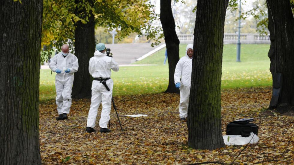 FLERE VOLDTEKTER: Krimteknikere sikret forrige helg spor etter en voldtekt i Slottsparken i Oslo. Foto: Erlend Aas / Scanpix