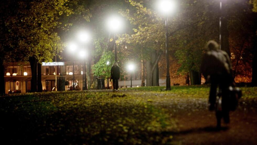 KRAFTIG ØKNING I VOLDTEKTER:  Oslo har blitt rystet av en rekke voldtekter den siste tida. Foto: Stian Lysberg Solum / SCANPIX
