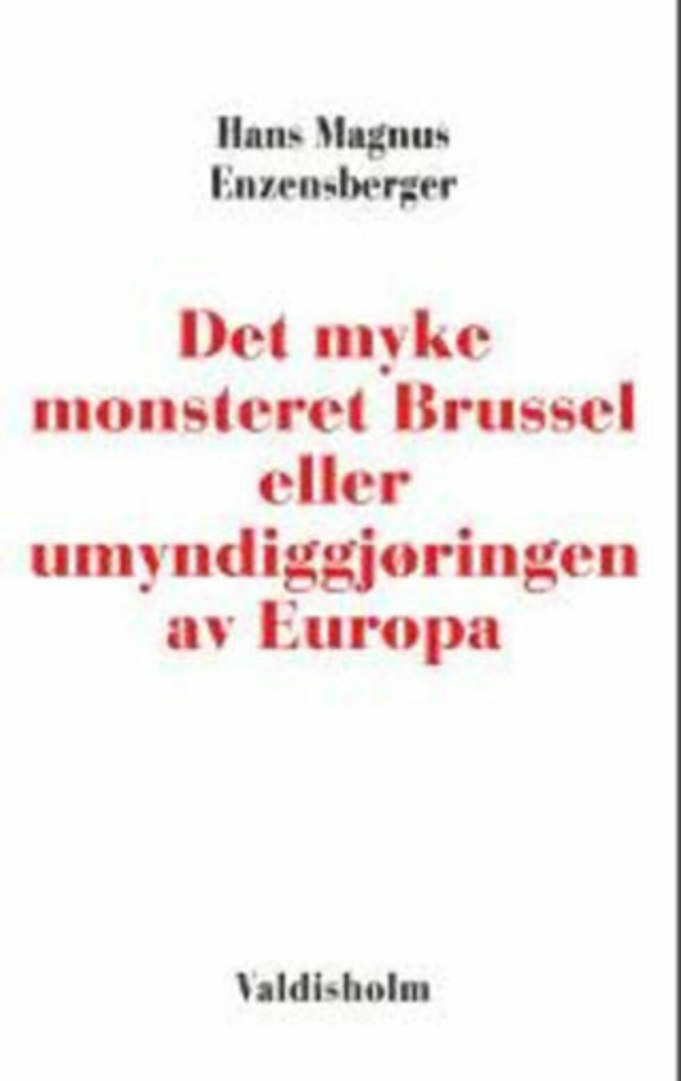 Lynskarpt skrift om EU