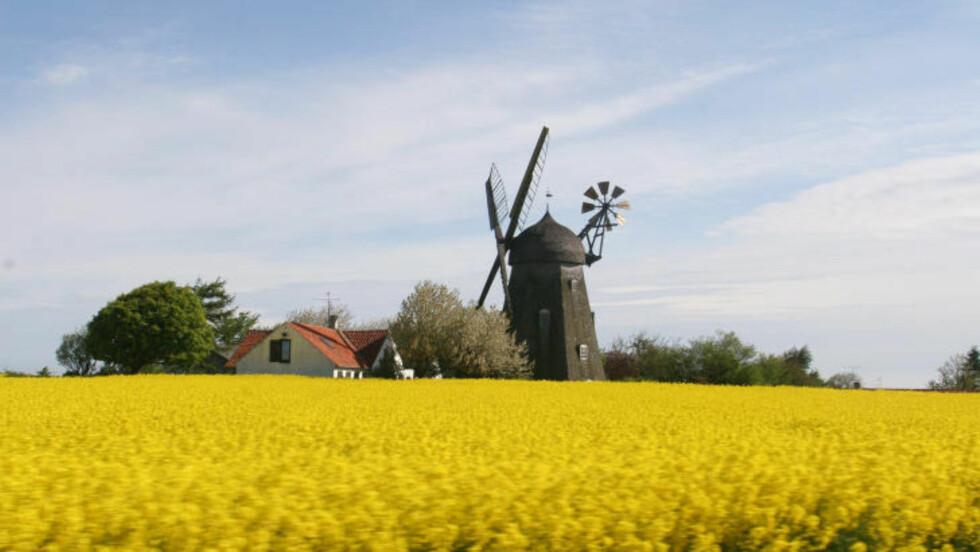IDYLL:  Bornholm har et eget tempo over seg.