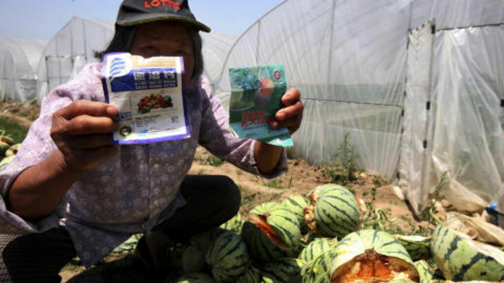 MISFORNØYD: Bøndene har brukt produktet forchlorfenuron, og her viser en av bøndene fram etiketten. Foto: AP/Scanpix