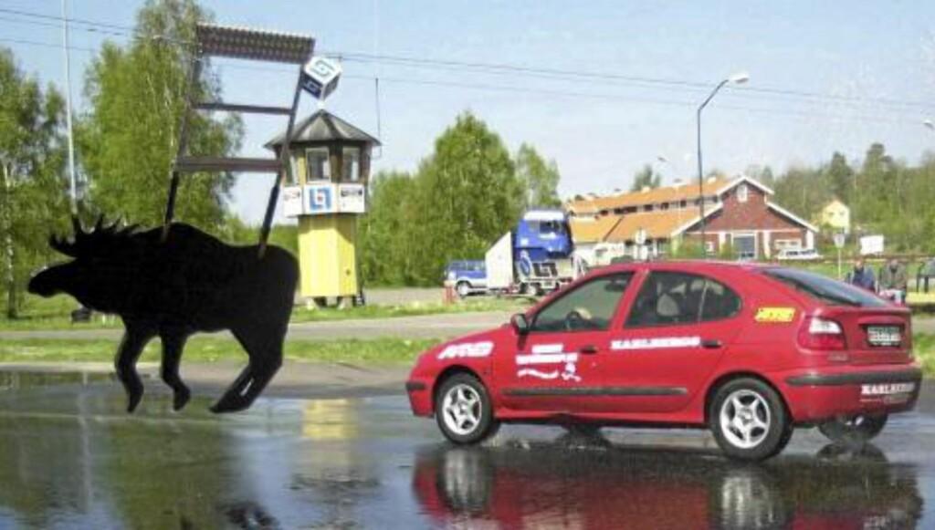 VIMMERBY: Sveriges første elgkollisjonsbane ble innviet i Vimmerby for ti år siden. Foto: SCANPIX