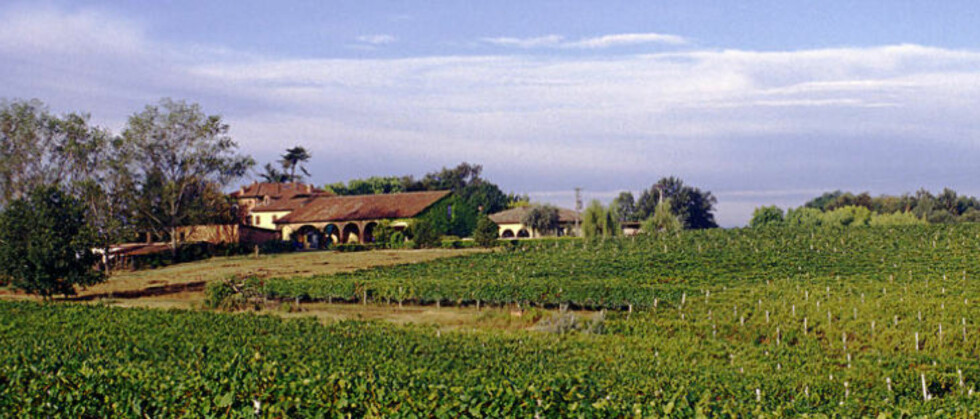 VINMARKER I PIEMONTE: Tenuta Grillo lager naturlig vin.