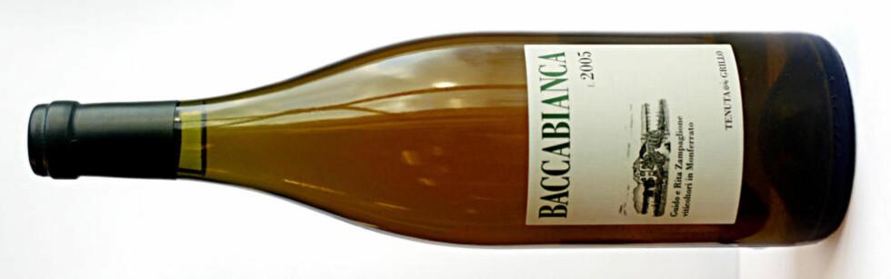 ORANSJE SEKSER: Grillo Baccabianca 2005 fra Piemonte. Se vinanmeldelser nederst. Foto: OLE C.H. THOMASSEN