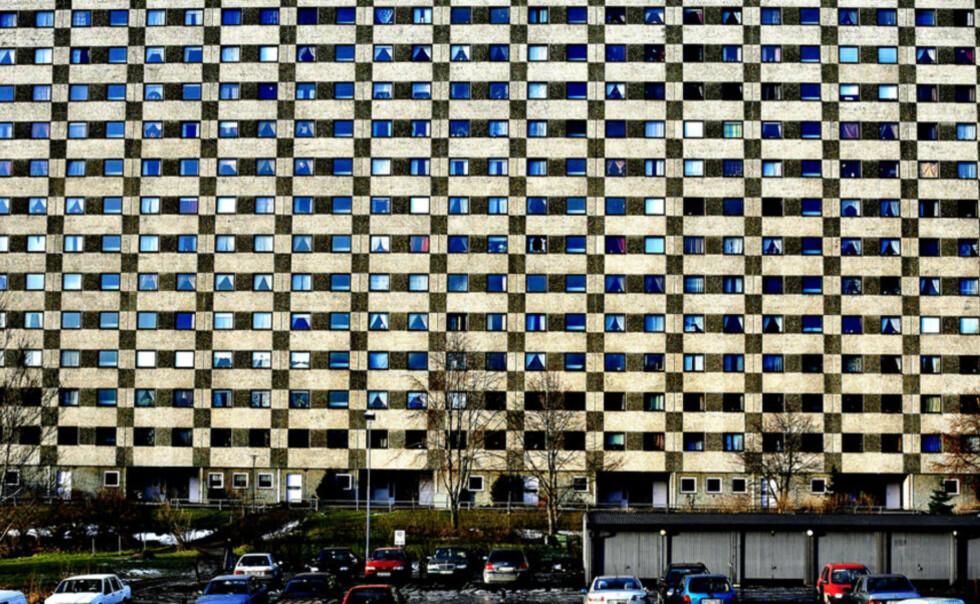 LANDEMERKE: De fire store boligblokkene på Ammerud i Groruddalen er blant Norges største. Nå vil Frp rive blokker i bydelen og bygge smått. Foto: METTE MØLLER/DAGBLADET