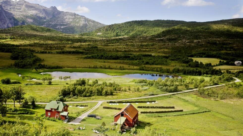 NEDERLAGSSTEMNING: Det siste tiåret har hvert tredje gårdsbruk i Norge blitt lagt ned, og prognosene enda lenger fram i tid gir enda mørkere utsikter. Samtidig framstilles denne utviklingen er skjebnebestemt og uunngåelig, skriver kronikkforfatteren. Bildet er fra Steigen i Nordland. Foto: Scanpix