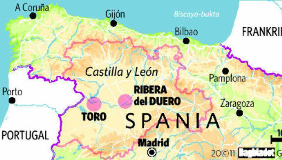 Polet blant de beste i verden på spansk toppvin