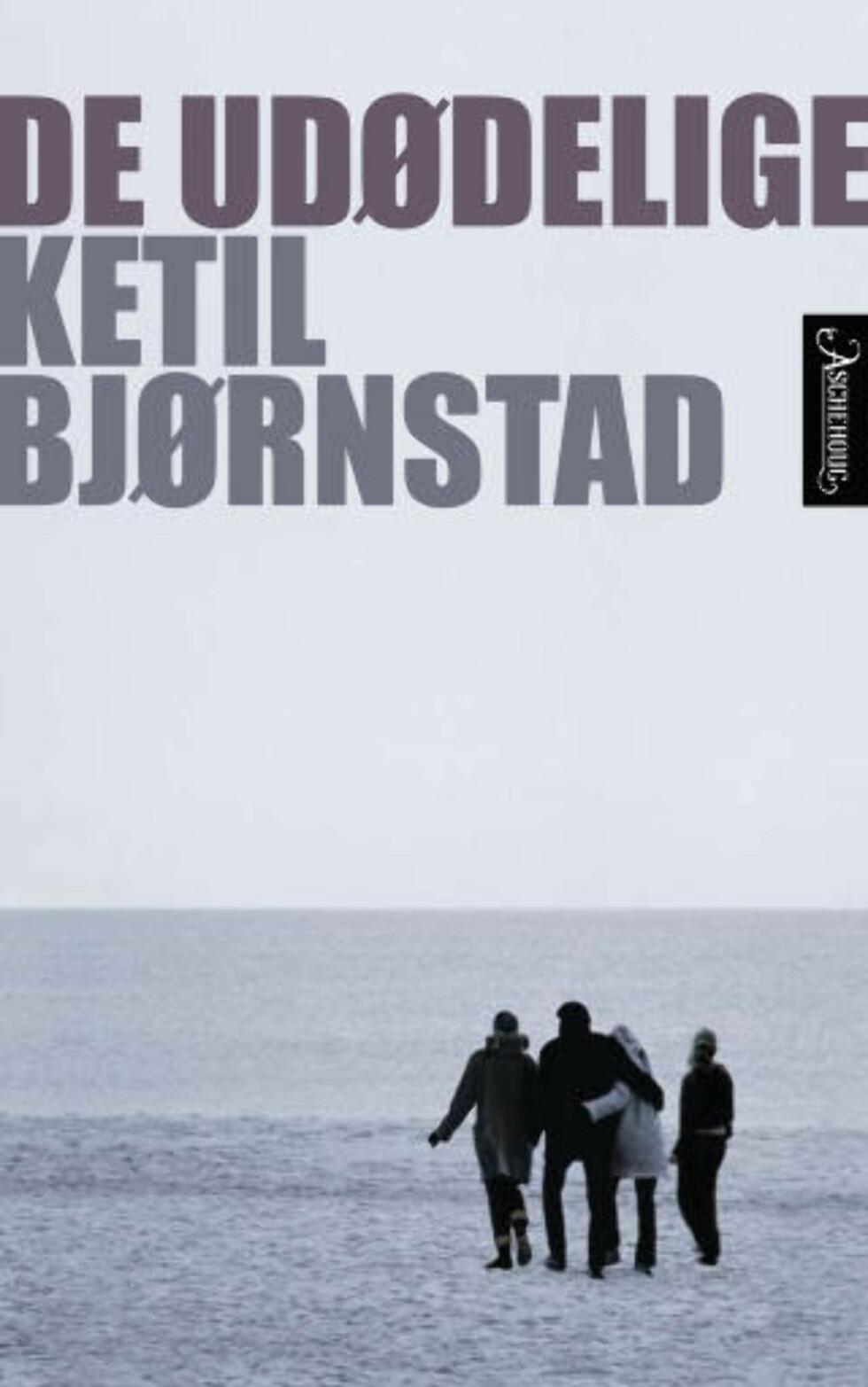 Dette er ikke en roman, Ketil Bjørnstad