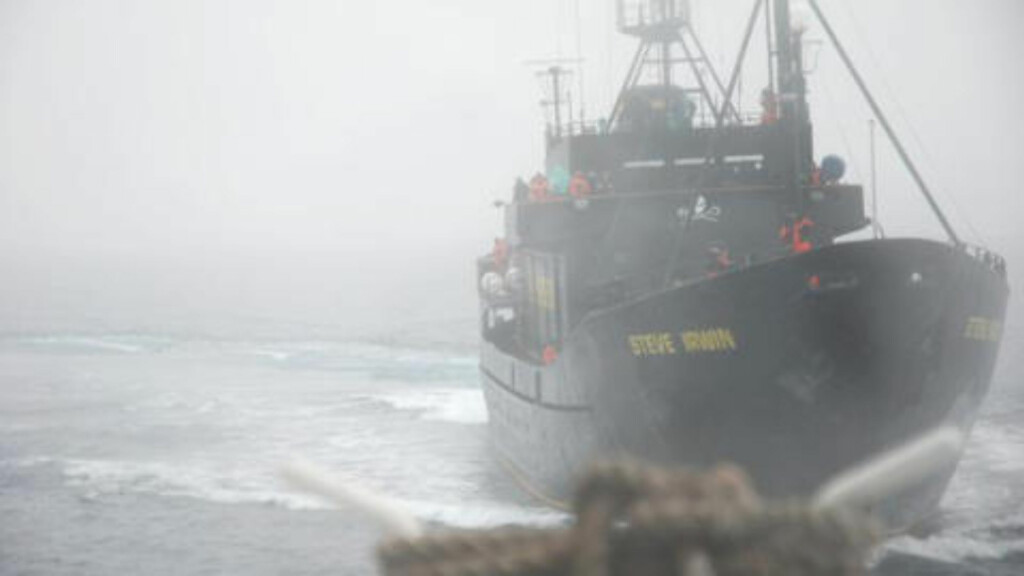 PÅ VEI:  Den 54 meter lange skuta Steve Irwin med hvalfangstmotstander Paul Watson som kaptein, er på vei for å lete etter Berserk, og vil trolig nå området i 20-tida norsk tid.  Arkivfoto: REUTERS/SCANPIX