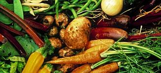 Vi spiser mer grønnsaker, men mindre fisk