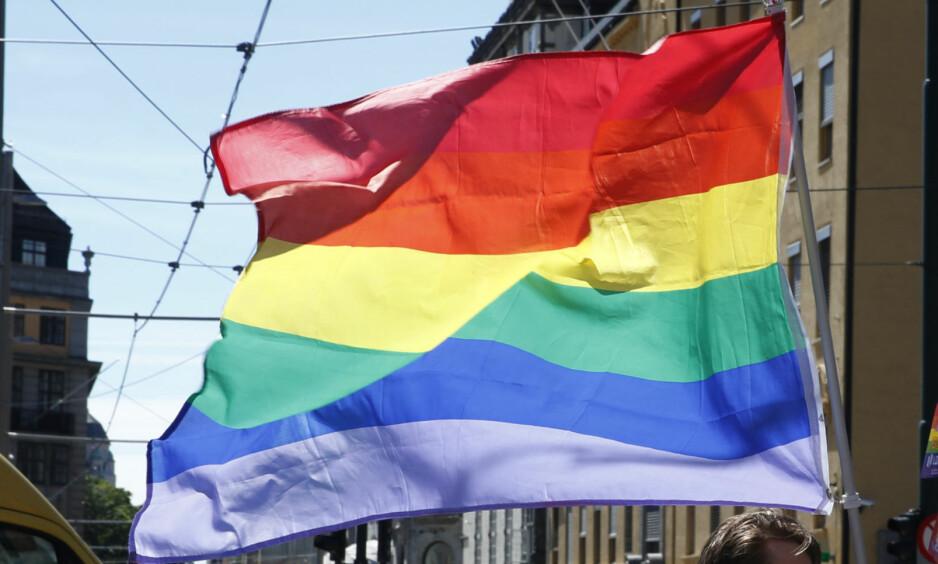 TIL TOPPS: Nå blir det likevel anledning til å vifte med regnbueflagget i 17. mai-tog i Skien. Foto: Vidar Ruud / NTB scanpix
